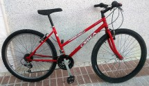 bici009