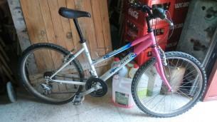 bici013