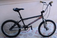 bici019