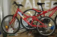 bici024