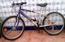 bici03