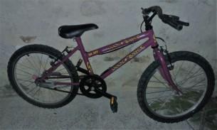 bici16