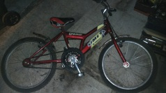 bici18